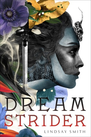 Dreamstrider book cover