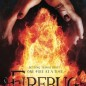 Firebug book cover