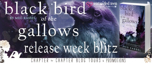 Excerpt & #Giveaway | Black Bird of the Gallows by Meg Kassel