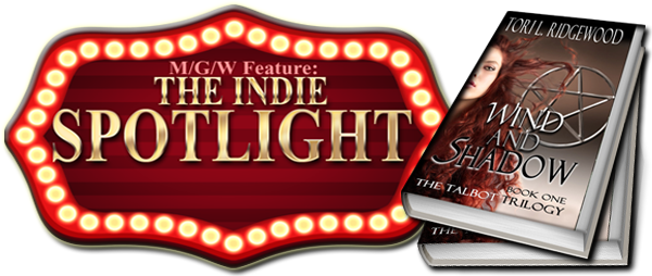 wind and shadow indie spotlight copy